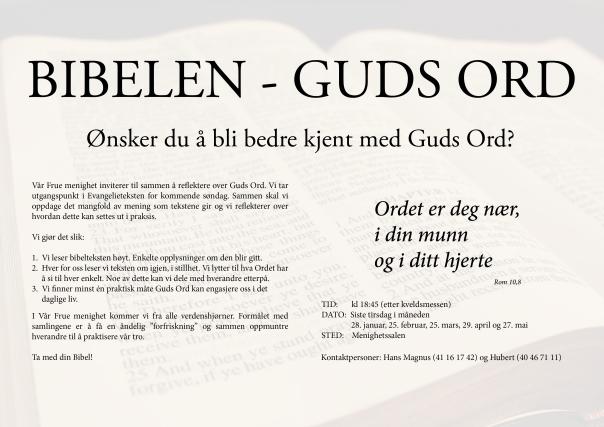 Bibelgruppe plakat